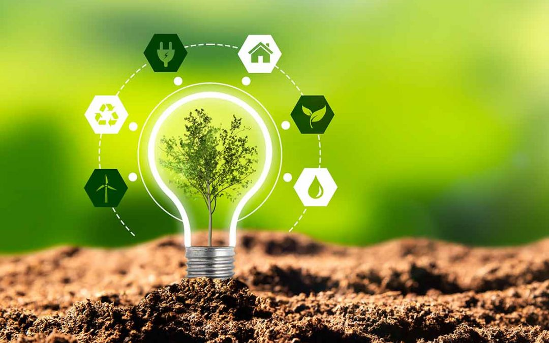 Understanding The Immediate Environmental Benefits of Solar Energy