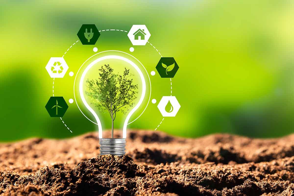 Solar Energy Florida   Environmental Benefits